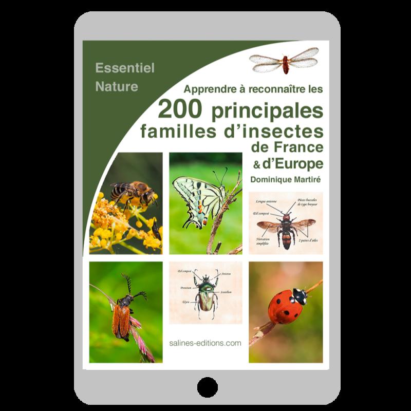 Couverture Les 200 principales familles d'insectes de France