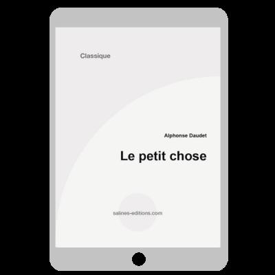 Couverture ebook Le petit chose