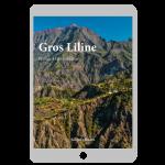 Couverture ebook Gros Liline