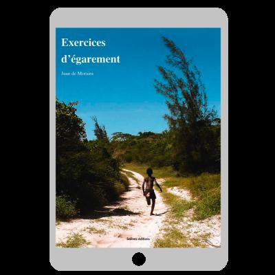 Couverture ebook Exercices d'égarement