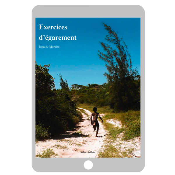Couverture ebook Exercices d'égarement