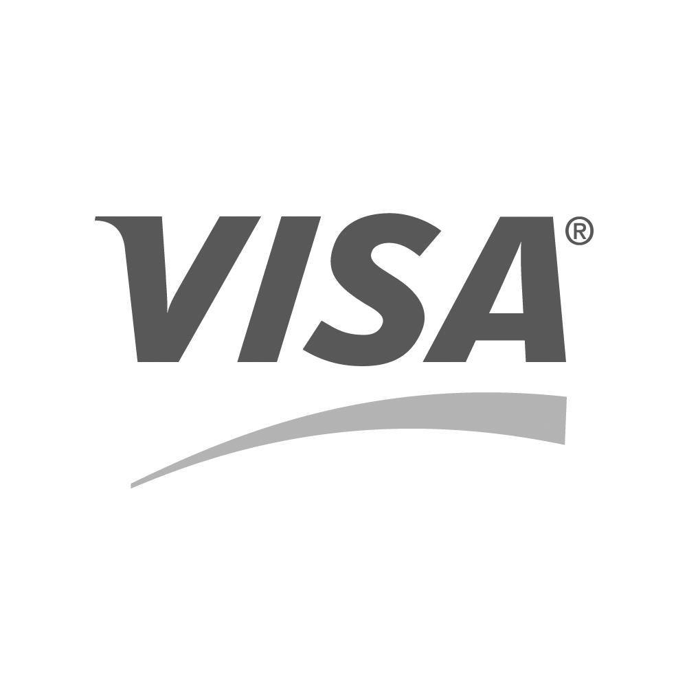 Logo paiement sécurisé - Visa